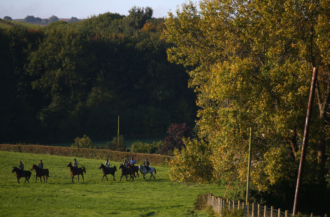Heading out to the schooling fences, 28 September