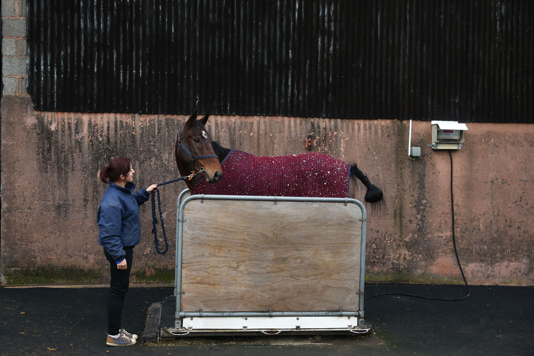 Filbert is weighed ahead of leaving the yard to race at Taunton, 12th November 2015