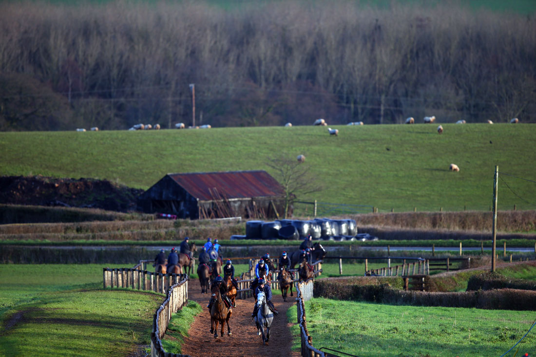Woodchip gallop 2nd lot, 5th January 2016
