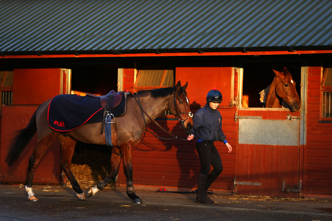 Lisa Jackson leads Balthazar King out for 2nd lot, 8th January 2016