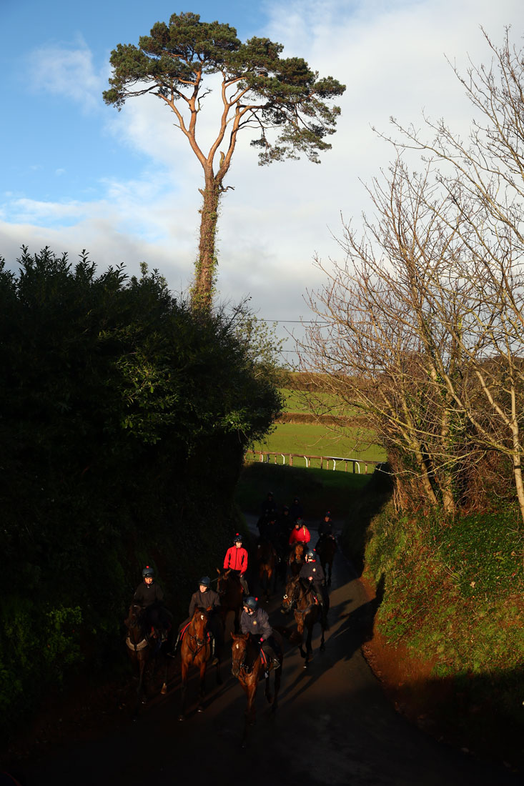 Heading back to the yard after third lot, 8th January 2016