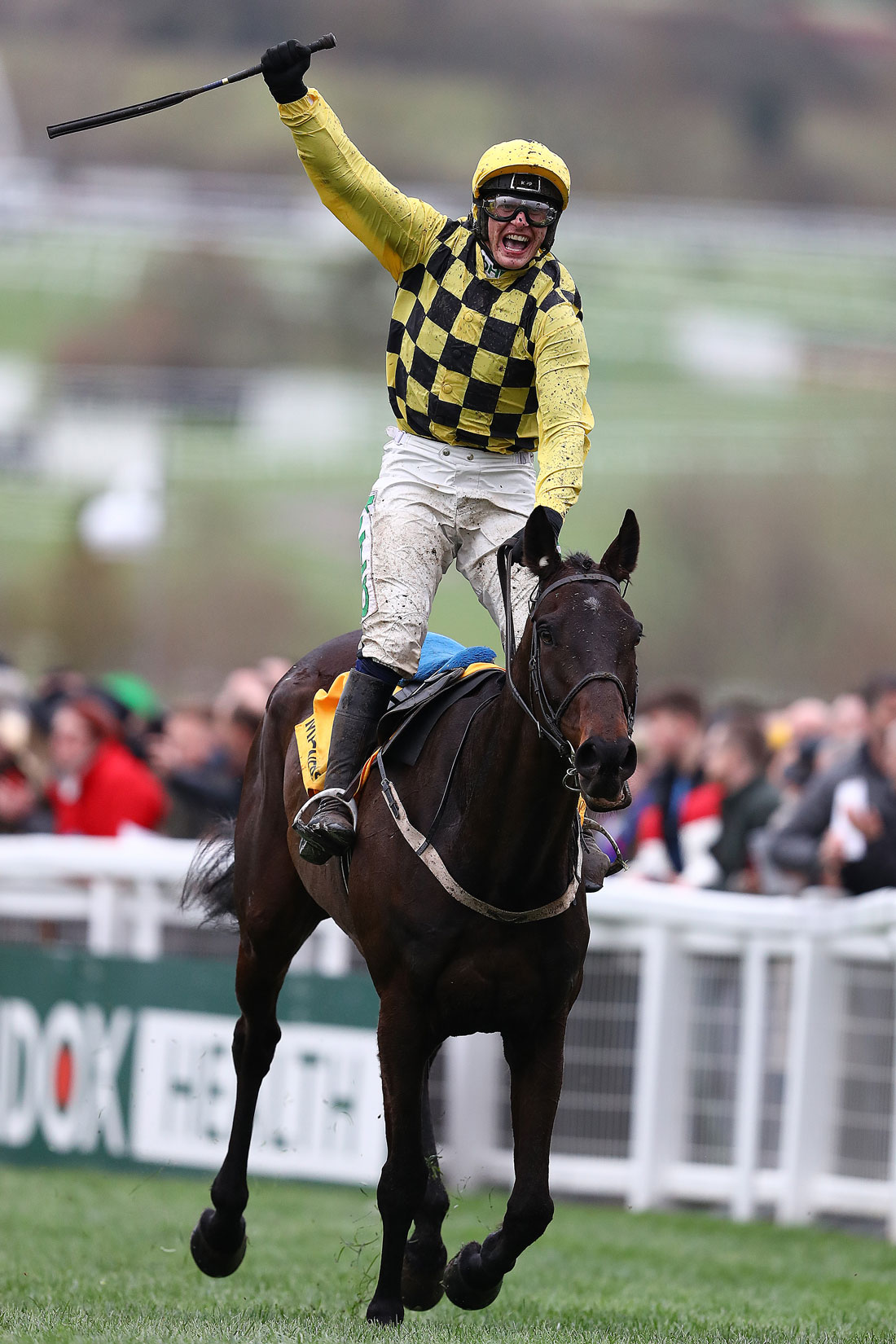 Jockey Paul Townend celebrates victory in the Cheltenham Gold Cup on Al Boum Photo, March 15th